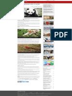 Por que é importante salvar os pandas - BBC News Brasil.pdf