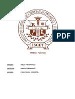 TRABAJO PRACTICO 1 DIBUJO TOPOGRAFICO.pdf