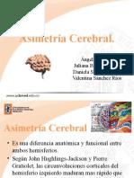 EXPOSICIÓN ASIMETRIA CEREBRAL