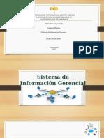 Sistema de información gerencial leidy garcia.pptx