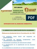 POLÍTICA PUBLICA AMB