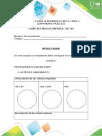 Protocolo para el desarrollo del componente practico - Tarea 4.docx