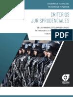 criterios jurisprudenciales en tareas de seguridad publica