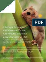 sotobosque_de_bambu_habitat_esencial_para_la_biodiversidad_del_bosque_templado_andino_de_chile