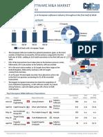 pdfslide.net_the-european-software-ma-market-catcap-software-markeswiss-autoform-engineering