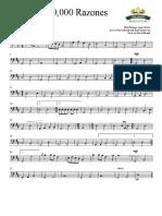 10.000 RAZONES  2016 - Cello