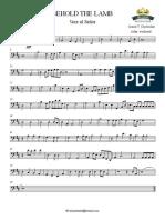 VERE AL SEÑOR 2015 - Cello
