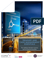 Treasury and Cash Management Essentials.pdf