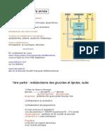 CoursBiopchimie.pdf