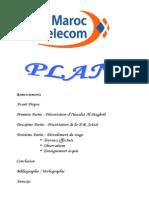 Rapport de Stage - Maroc Telecom