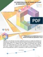 Anexo 4 Formato de Entrega POA - paso 5 - V4