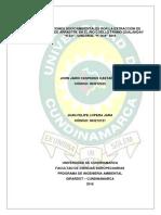 Afectaciones Socioambientales por la Extracción de Material de Arrastre en el Río Coello Tramo Gualanday  K 0.0-Chicoral K10.9 2016.pdf