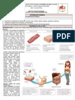 Guía 6 Niveles de Organización Biológica.
