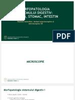 Patologia_tract_digestiv_I_LP.ppt