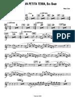 LA MEVA PETITA TERRA, Big Band Soprano Sax