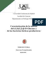 Tesis ML Werning.pdf