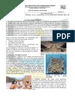 guía de literatura precolombina