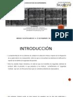 EQ 3 - 1B SIRAIS, SEGURIDAD  DEL PROFESIONAL.pptx
