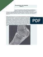 Mecanismos de resposta 5.pdf
