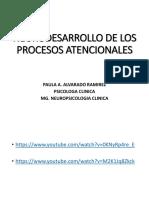 5. NEURODESARROLLO DE LOS PROCESOS ATENCIONALES