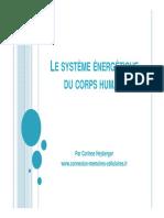 Le Système Énergétique Du Corps Humain