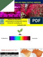 Cultivo de planta com iluminação suplementar