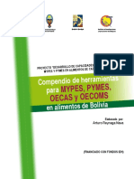 Manual BPM.pdf