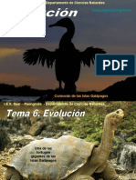 Evolucion (1)