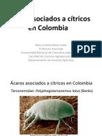 biblioteca_60_Ácaros asociados a Cítricos en Colombia.pdf