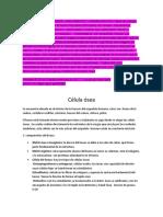 TIPOS DE CÉLULAS ÓSEAS
