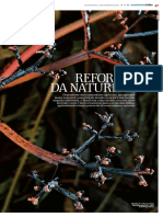 Reforma da Natureza