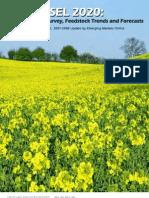 Biodiesel 2010 by Emerging Markets Online