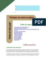 Pollo_de_engorde_CONSIDERACIONES_GENERAL.docx