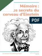 DS-PAGES-Einstein