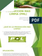 PRODUCCION MAS LIMPIA MELANI POLANIA PINO