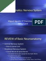 Module-14-Nervous-System