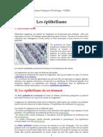Histo Epithelium