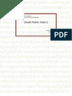 Audit Public Intern[1]