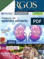 Argos 205 ins. renal_iMR.pdf