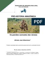 Pg.72_CENTRO_BRASILEIRO_DE_ARQUEOLOGIA_CBA_PRE.pdf