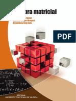 Álgebra_Matricia_lVicent.pdf
