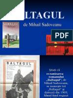 baltagul_prezentare