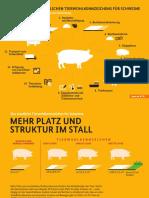 Tierwohlkennzeichen_Schwein_Grafiken