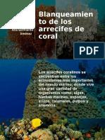 Diapositivas blanqueamiento de arrecifes de coral