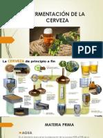 13._PROCESO_DE_LA_CERVEZA