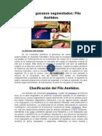 1-Anelidos.docx