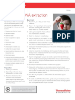 Strawberry DNA Extraction (1).pdf