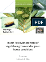 Insect Pest Management of Vegetables Grown Under Green