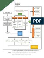 Sostenible pdf