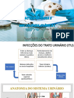 INFECÇÕES DO TRATO URINÁRIO (ITU).pdf